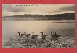 CPA: USA - NM - Las Vegas - New Mexico - Autres