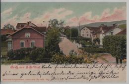 Gruss Aus Schöftland - Litho H. Guggenheim No. 7509 - Stempel: Hirschthal Nach Bevers - AG Argovie