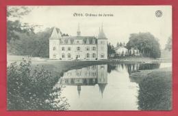 Jannée - Le Château... Oblitération Allemande - 1918 ( Voir Verso ) - Ciney
