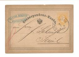Switzerland. Postal Stationary Reichenburg CDS July 8, 1875 - Enteros Postales