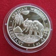 Somalia 100 Shilling 2017 Elephant - Somalia