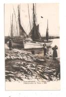 Douarnenez-Le Grand Port-Débarquement Du Thon-(B.5718) - Douarnenez