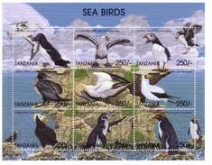 TANZANIA - MANCHOTS PINGUOINS PENGUINS PINGUINS OISEAUX DE MER : CORMORANS MACAREUX PETRELS ... - Preservar Las Regiones Polares Y Glaciares
