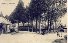 Overpelt Wegwijzer 1908 - Overpelt