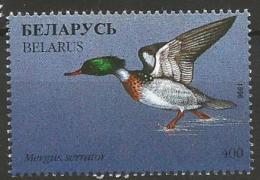 Belarus - MNH - Red-breasted  Merganser ( Mergus Serrator ) - Canards