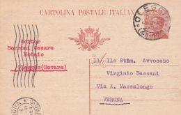 1924 CARTOLINA POSTALE Michetti C.30 Senza Millesimo Oleggio  (26.6) Segni Di Spillo - Storia Postale