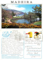 Lake, Funchal, Madeira, Portugal Postcard Posted 2005 Stamp - Madeira