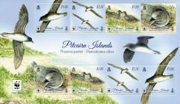 WWF W.W.F. Pitcairn Islands Phoenix Petrel Bird / Birds MNH Perf Sheetlet 2016 - W.W.F.