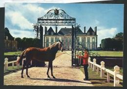 """Le Haras Du Pin  - """" Carmathen """" Etalon De  Sang Anglais   - Cpsm Gf - Obe2504 - Altri Comuni"""