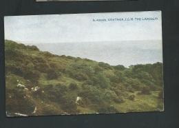 Ventnor , I.O.W. The Landslip   - Obe2520 - Ventnor