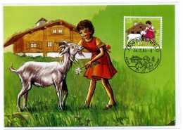 CHEVRE /  ZIEGEN / GOAT /  CARTE MAXIMUM / SUISSE / FERME  / HEIDI - Stamps