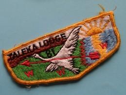 TALEKA LODGE / Zie Foto Voor Detail ! - Scoutisme