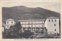 8361-BROLO DI CESARA(VERBANIA)-COLONIA ALPINA VERCELLESE-1946-FP - Verbania