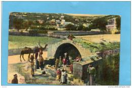 PALESTINE-NAZARETH-fontaine De La Vierge-  Animée Années 1900-10 - Palestine
