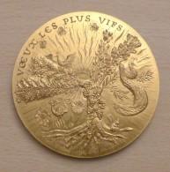 BELLE MEDAILLE En Bronze Doré. Vœux Les Plus Vifs. 1978. Graveur Daniel PONCE (1933- ) - France