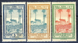 Guyane Tasse 1929 Serie N. 13-21 I Primi 3 Valori. MLH Catalogo € 1,50 - Neufs