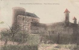 SANDRANS    01    AIN     CPA  COLORISEE  VIEUX CHATEAU - Châtillon-sur-Chalaronne