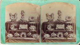 Mother And Sister - Stereoscope Cards