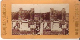 European And American  Views  347 The Forum - Stereoscope Cards