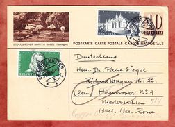 P 184 I Ziffer + ZF, Abb: Zoologischer Garten Basel Flamingos, Disentis Muster Nach Hannover, Zurueck? 1948 (33760) - Ganzsachen