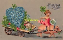 CPA  EN RELIEF GAUFREE COCHON EMBOSSED CARD PIG MSIB 13810 - Cochons