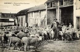 77 SAMOREAU - Ferme Du Haut SAMOREAU - La Bergerie, Moutons Et Berger En Gros Plan - Très Animée - France