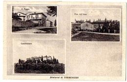 TORRENIERI (SIENA) DINTORNI - IL POGGIO,PIAN DELL'ASSO,CASTELVERDELLI - RARA - VG 1955  FP - C068 - Siena
