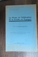 LA PECHE ET L'UTILISATION DE LA CIVELLE EN ESPAGNE 1929 - Autres