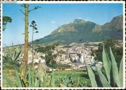 Kapstadt, Gesehen Von Signal Hill, Südafrika, 1984 - Südafrika