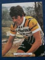 """""""""""  CARTE  POSTALE  équipe Renault - Gitane - Campagnomo  //  ANDRE  CHALMEL  """""""" - Cyclisme"""