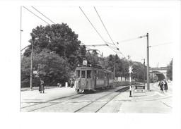 19001 - Chemin De Fer Tram Bâle St-Jacob Photo BazinBVA 1960 (format10X15) - BS Bâle-Ville