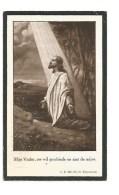 246.  FRANCISCA  THEUNIS  -  °OLMEN  /  +HEPPEN 1918  (74j.) - Andachtsbilder