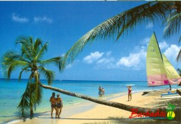 AK Barbados 2007 Strand Westküste - Ansichtskarten
