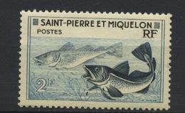 SPM. MORUE - N° Yvert 355** - St.Pierre Et Miquelon