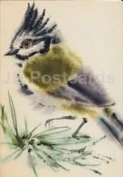 Illustration By E. Pikk - European Crested Tit - Lophophanes Cristatus - Birds - 1974 - Estonia USSR - Used - Oiseaux