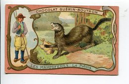 Mammifères  Putois Chocolat Guérin Boutron - Guerin Boutron