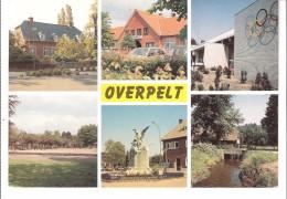 Groeten Uit Overpelt (Limburg)-Meerzicht-Domein 't Pelterke-Standbeeld Der Gesneuvelden 1914-1918-Watermolen... - Overpelt