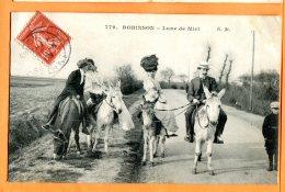 ALB062, Ane, Mûle, Lune De Miel, Robinson, Mariage, Just Married, 779,  Animée, Circulée 1908 - Ezels