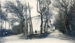 Tarn - Dourgne - Avenue De Soual Et Rue De La Poste Ou De La Cassine - Dourgne