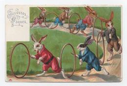 Rare > Jeux - Lapins élégants Qui Jouent Avec Des Cerceaux - Animaux Habillés