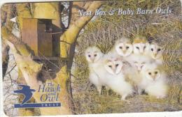 JERSEY ISL. - The Hawk & Owl Trust/Baby Barn Owls, CN : 61JERD(0 With Barred), Tirage %20000, Used - United Kingdom