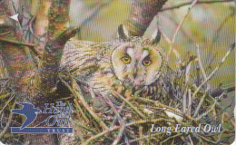 JERSEY ISL. - The Hawk & Owl Trust/Long Eared Owl, CN : 61JERC(normal 0), Tirage %20000, Used