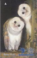 JERSEY ISL. - Barn Owls, CN : 61JERA(normal 0), Tirage %20000, Used