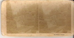 The Maiden's Dream. Faded - Stereoscope Cards