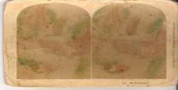 3301. The Woodchuck. - Stereoscope Cards