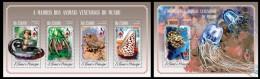 S. TOME & PRINCIPE 2014 - Poisonous Molluscs - CV = 29 € - Coneshells