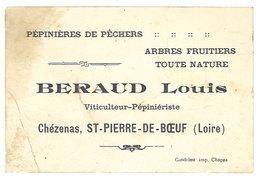 Carte Commerciale Louis Beraud, Viticulteur-Pépiniériste, Chézenas, St Pierre De Boeuf ( Loire ) - Publicité