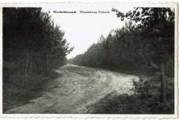 WECHELDERZANDE Wandelweg Visbeek - Lille
