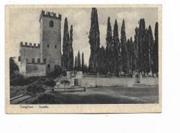 CONEGLIANO CASTELLO   VIAGGIATA FG - Treviso