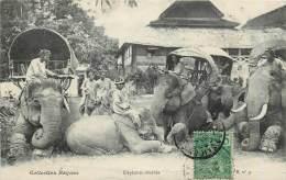 Laos - Série B N° 9 - Collection Raquez - Eléphants Couchés - Bas De La Carte Croquée Non Pliée - Laos